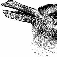 La famosa ilusión óptica del pato y el conejo, cómo la interpreta una inteligencia artificial y qué consecuencias tiene eso