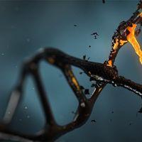¿Harías una prueba genética a un niño para saber cuán inteligente será de adulto?