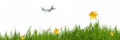 Adios al papel en los billetes de avión