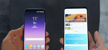 Samsung estaría preparando la beta de Android 8.0 Oreo para los Galaxy S8
