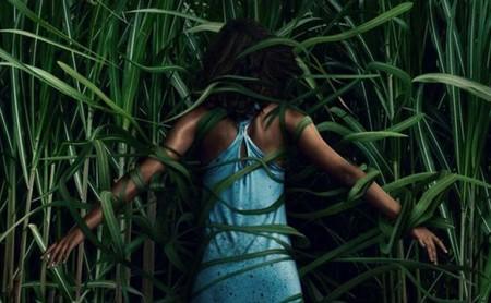 Sitges 2019: 'En la hierba alta'. Netflix vuelve a acertar adaptando a Stephen King gracias a un inspirado Vincenzo Natali