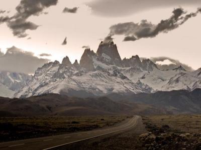 Compañeros de ruta: naturaleza en estado puro