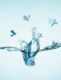 L'eau du Temps, edición limitada