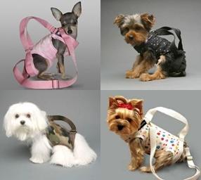 Carga a tu perro con estilo