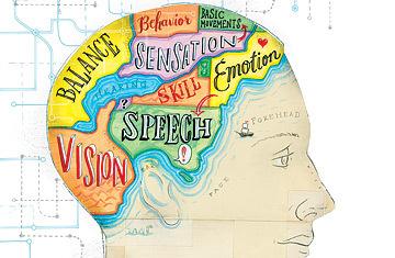 Tira los dados dodecaedros de tu personalidad: el neuroperfil (y II)