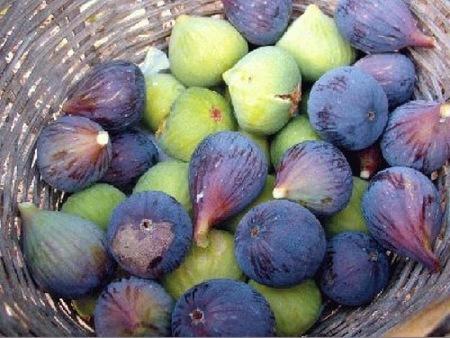 El higo, una fruta mediterránea muy rica en minerales