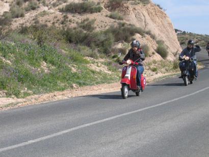 Pimentón 2007