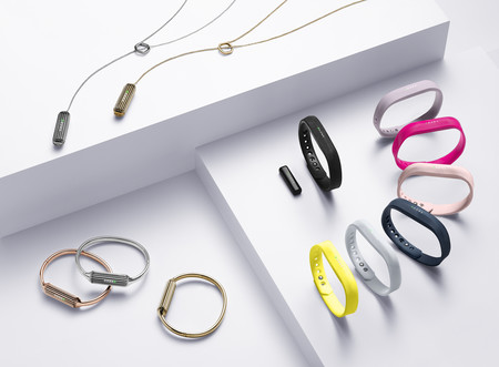 Fitbit Flex 2 Family