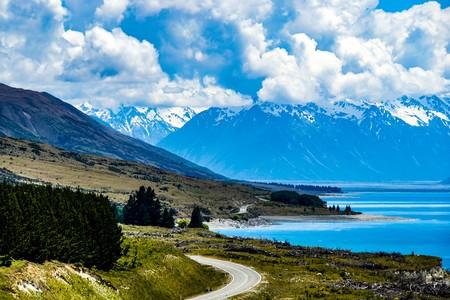 New Zealand 4631617 1920