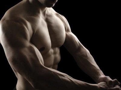 Cuatro vitaminas y minerales que tus músculos necesitan