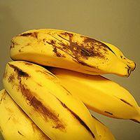 La herramienta de edición genética CRISPR ha permitido destruir virus en los genes de plátanos africanos