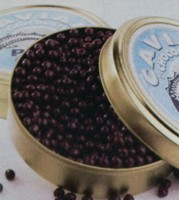 Caviar de Chocolate de Paco Torreblanca