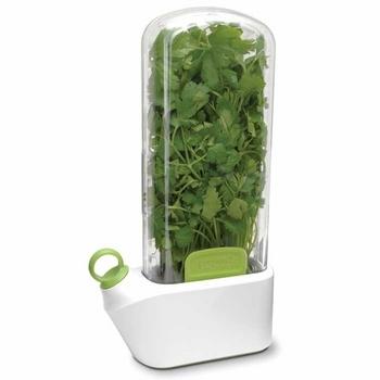 Mantén frescas tus hierbas aromáticas con este curioso gadget