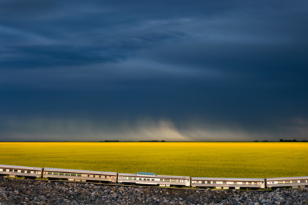 Train Saskatchewan Canola