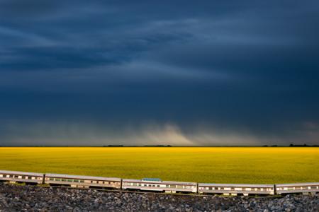 Train Saskatchewan Canola