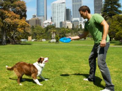 Mantener una buena forma física y mental gracias a nuestra mascota