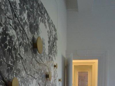 Cómo combinar y contrastar paredes, puertas, suelos y zócalos: 5 ideas y 5 estilos