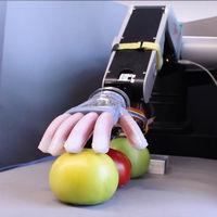"""Esta mano robótica es capaz de escoger el tomate perfecto porque no solo lo coge: lo """"siente"""""""