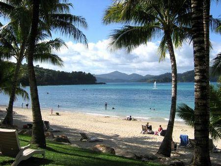 El mejor trabajo del mundo en una isla australiana