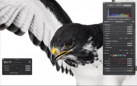 Apple y su nueva pantalla Retina con 5.1 millones de píxeles ¿mejoras para fotografía? Parece que sí