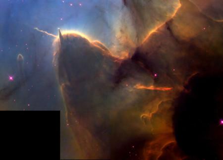 Nebulosatrifida