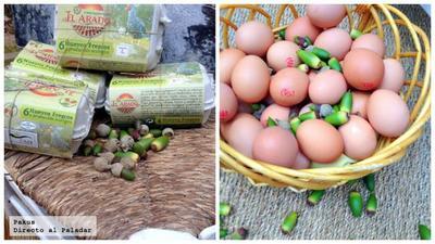 """Una empresa comercializa huevos camperos """"ibéricos"""", alimentados con bellotas"""