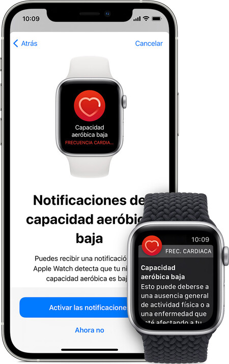 Ios14 Iphone12 Pro Watchos7 Series6 Low Cardio Health Notification