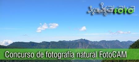 Concurso de fotografía de naturaleza Caja Mediterraneo