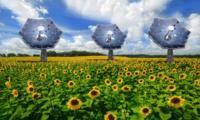 Esta instalación solar de IBM es parte importante del futuro de las energías renovables