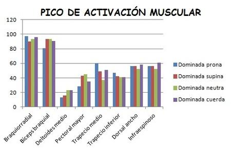 Pico de activación muscular dominadas