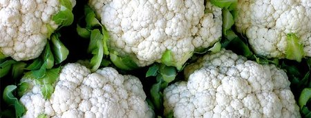 Verduras y hortalizas otoñales