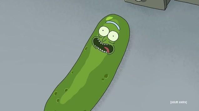 Pickle Rick Rick And Morty Season 3 Episode 3