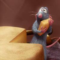 Uno de las mayores mentiras del mundo animal, al descubierto: a los ratones no les gusta el queso
