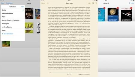 Leyendo en iPad
