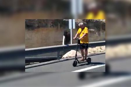 Pillado en patinete eléctrico, por el arcén de una autovía y sin casco (y ya van dos en la misma carretera)