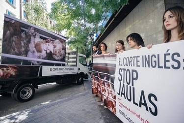 Los animalistas revolucionan las redes con su campaña #MaltratoAnimalElCorteInglés