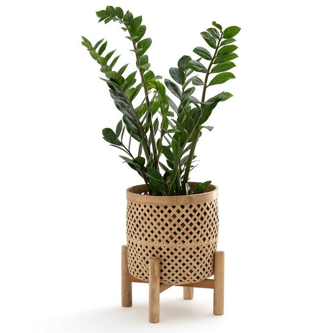 Macetero de bambú