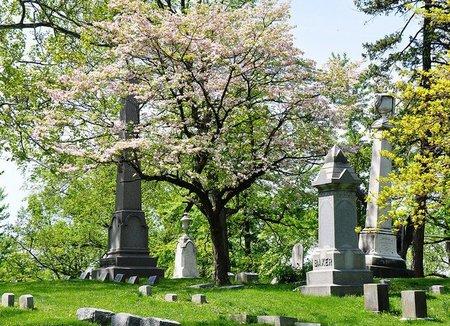 Visita al Cementerio de Woodlawn, en Nueva York
