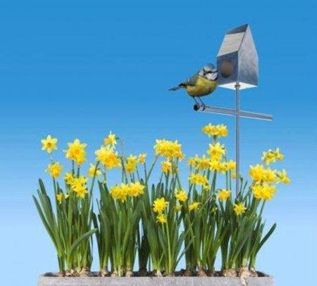 Casa de pájaro