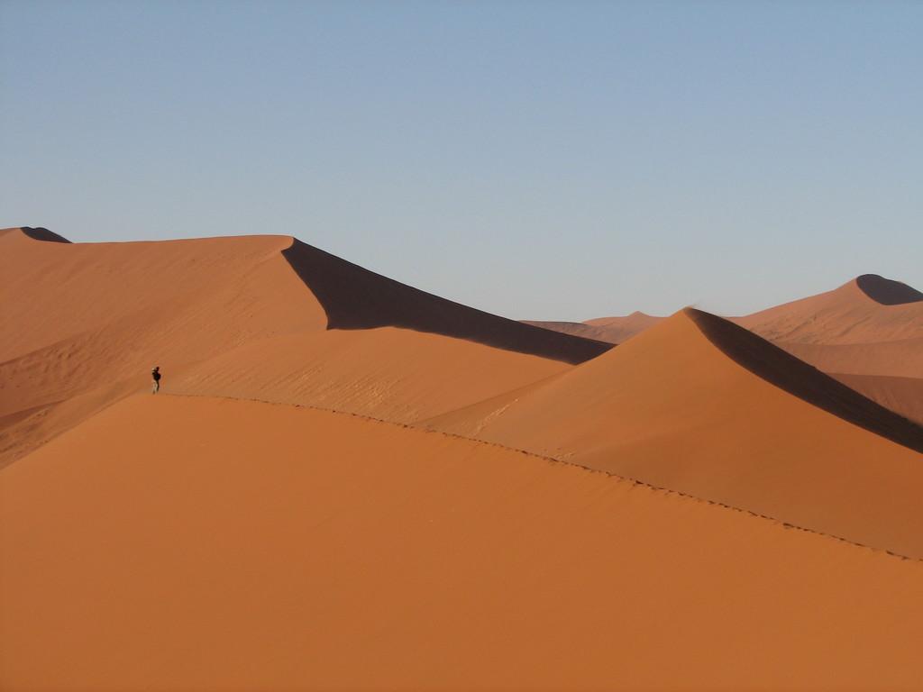 Como montar a pelo un gusano de arena: los retos a los que se enfrenta Denis Villeneuve con su Dune