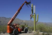 Los peculiares camuflajes que usan algunas teleoperadoras para sus torres de telefonía móvil