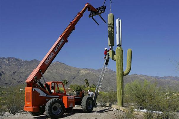 cactus antena telefonía móvil