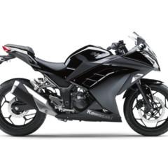 Foto 3 de 58 de la galería kawasaki-ninja-250r-2013-cambio-radical-para-la-mas-pequena-de-la-familia en Motorpasion Moto