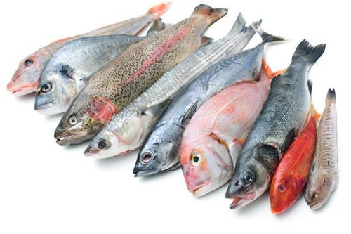 Pescado azul y pescado blanco: ventajas y desventajas de cada uno de ellos para lograr un cuerpo sano y atractivo