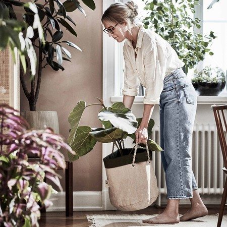 Ikea Coleccion Botanisk 2020 Ph167924 Bolsa Cultivo