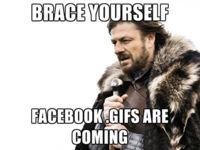 ¡Prepárense! los GIFs finalmente están llegando a Facebook de forma nativa