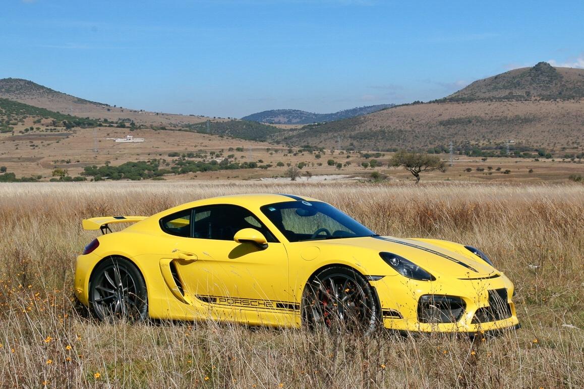Foto de Porsche Cayman GT4 (16/19)