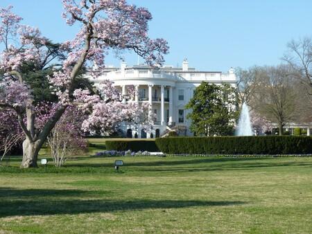 White House 451544 1920