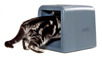 Un comedero exclusivo para tu gato