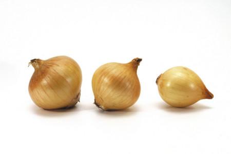 Cinco razones para incluir cebolla a tu dieta habitual